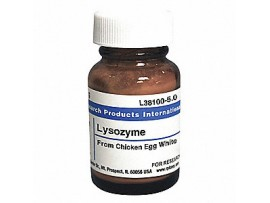 Lysozyme from chicken l6876-10GR